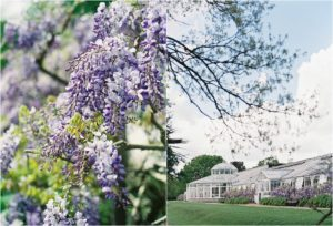 The orangery at a Chiswick House wedding with wisteria in bloom