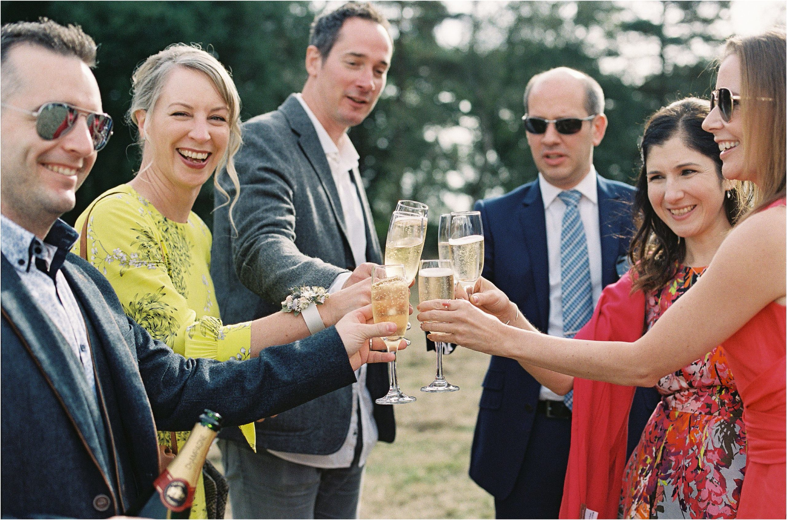 guests toasting at wedding